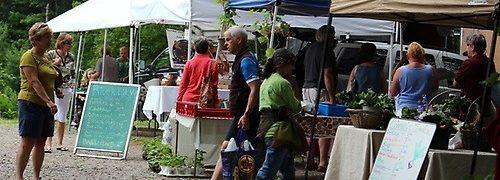 York Maine Farmers Market